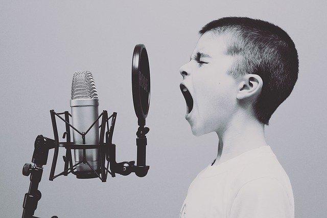 Malý zpěvák