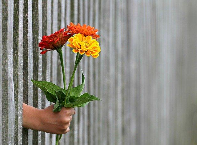 květina v ruce